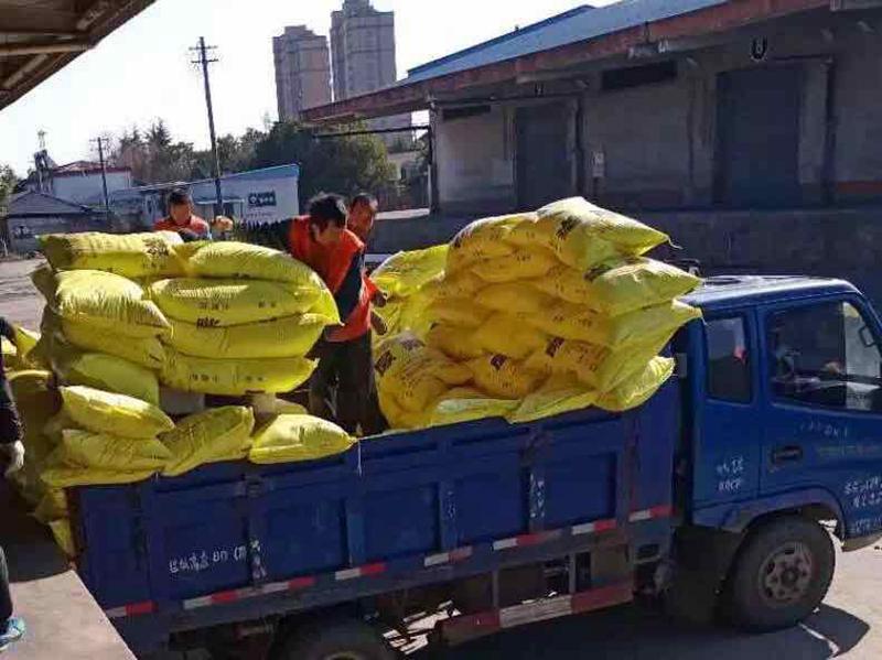 日產量1100噸 發(fa)運量700噸 浙(zhe)農切實保障春耕(geng)農資供應